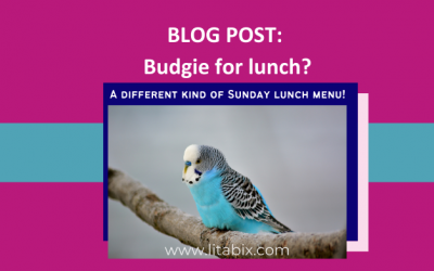 Budgie for lunch? Probably not the best choice on a Sunday